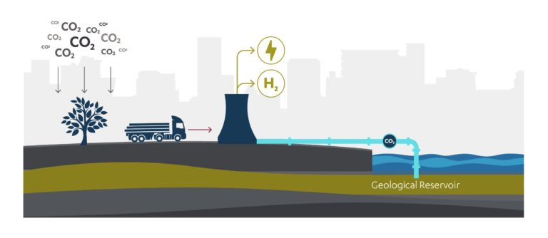 Diagram showing the process for bioenergy + carbon capture and storage