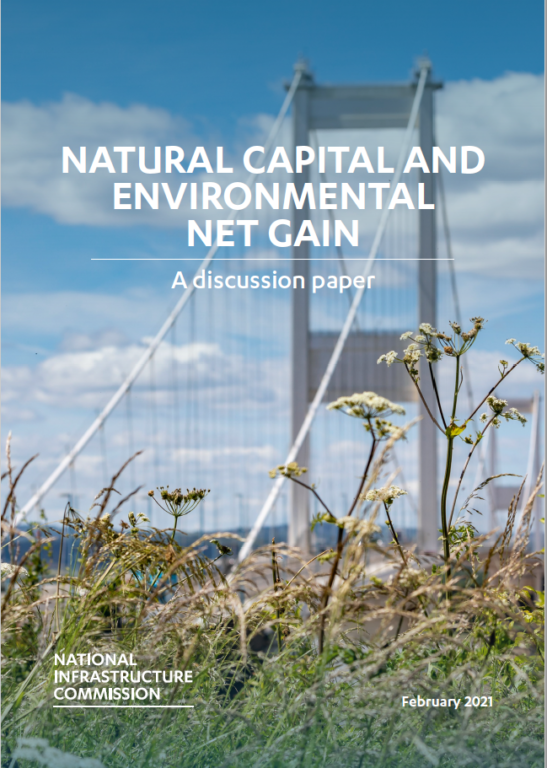 Cover of the natural capital report